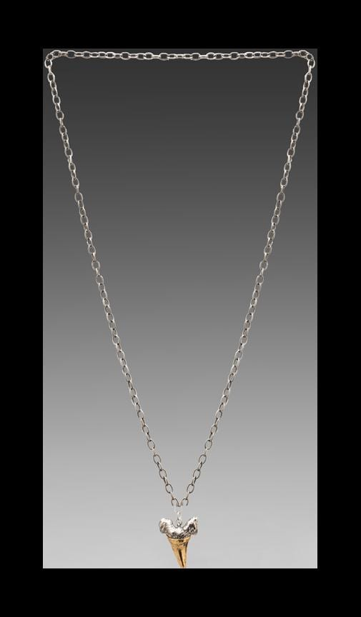 Two-Toned Charm Necklace