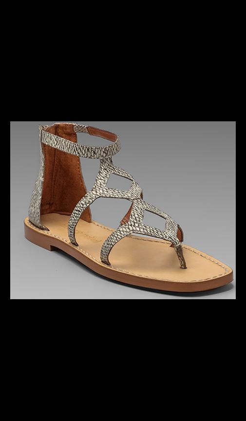 Kendal Sandal