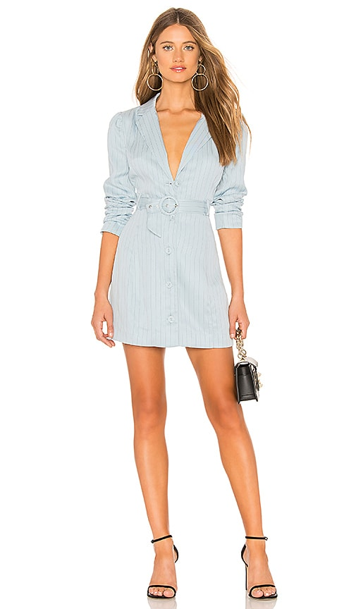 Oakwood Mini Dress