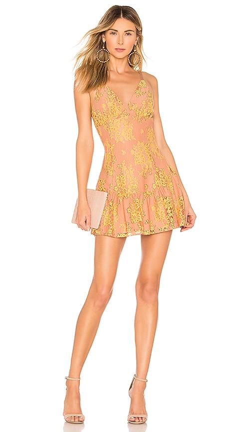 Brinkley Mini Dress