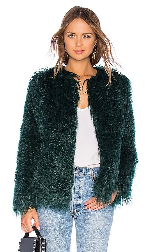 Briar Coat