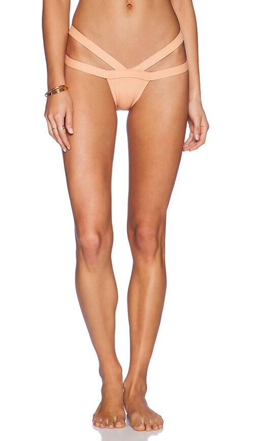 The Bandit Bikini Bottom