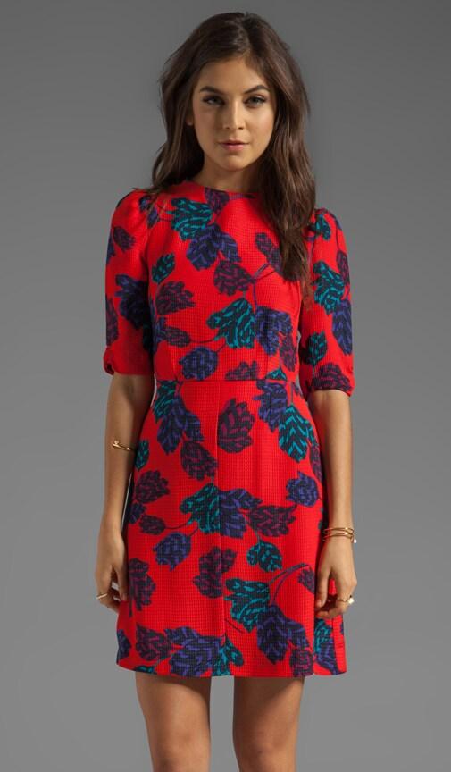 Mareika Tulip Dress