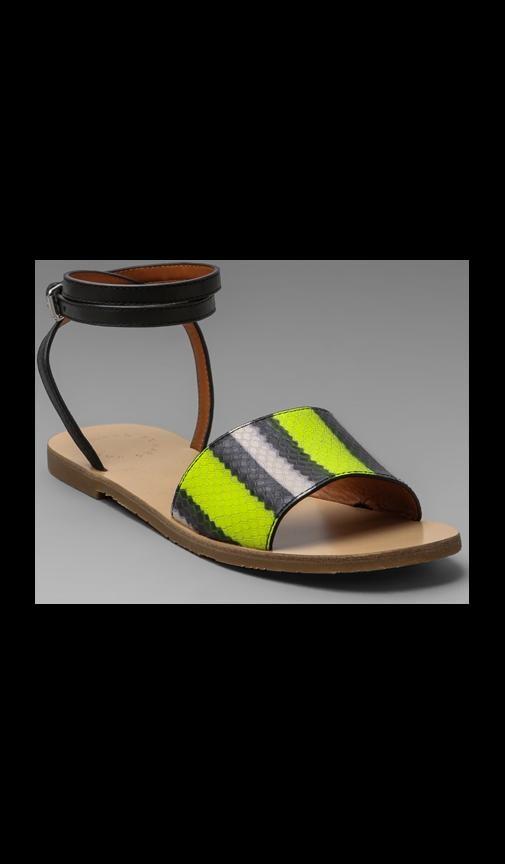 Anemone Fish Stripe Flat Sandal