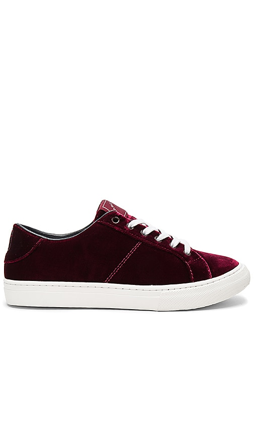 Marc Jacobs Empire Low Top Sneaker in Burgundy