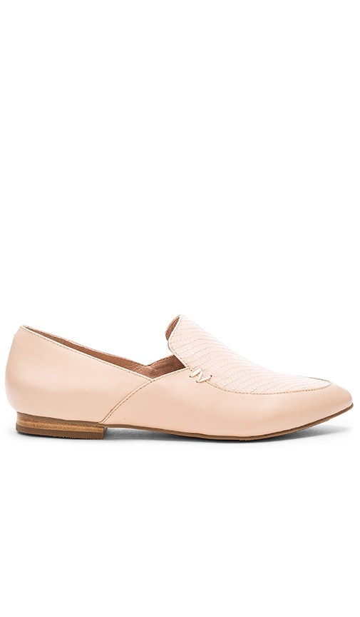 Matisse Alex Flat in Blush