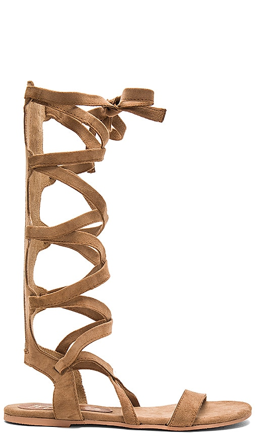 Matisse Zepher Sandal in Brown