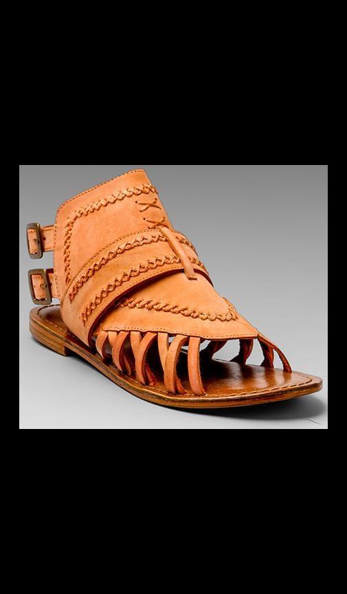 Tourist Gladiator Sandal