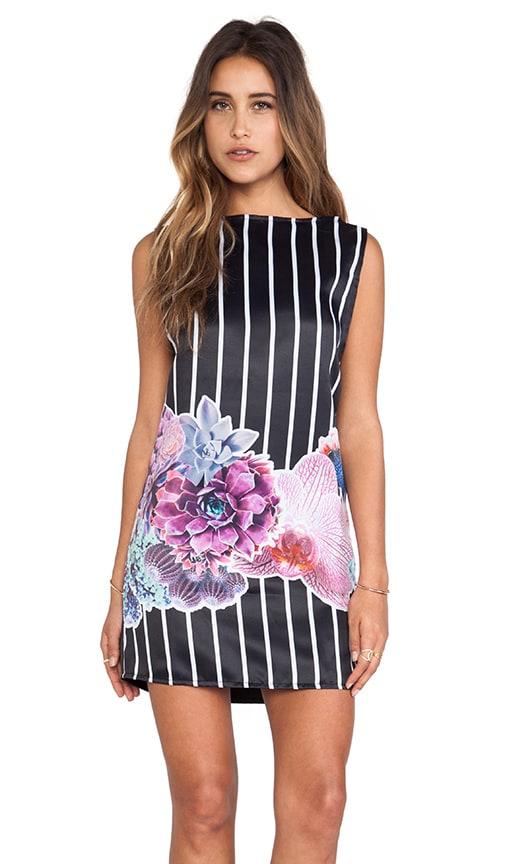Cactus Stripe Shift Dress
