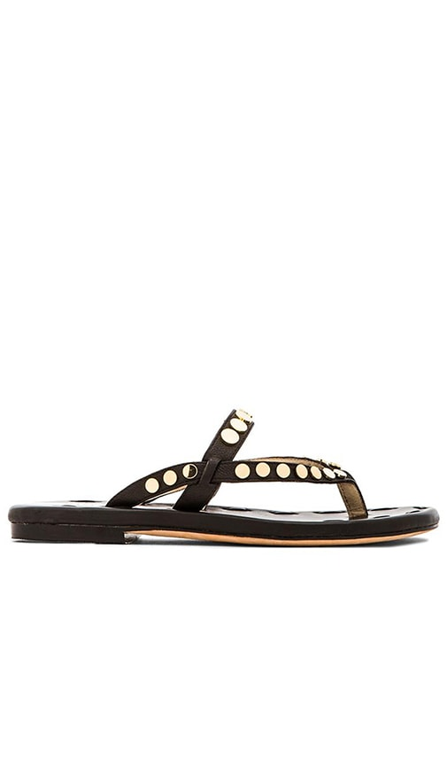 Matt Bernson Love Disc Sandal in Black & Gold