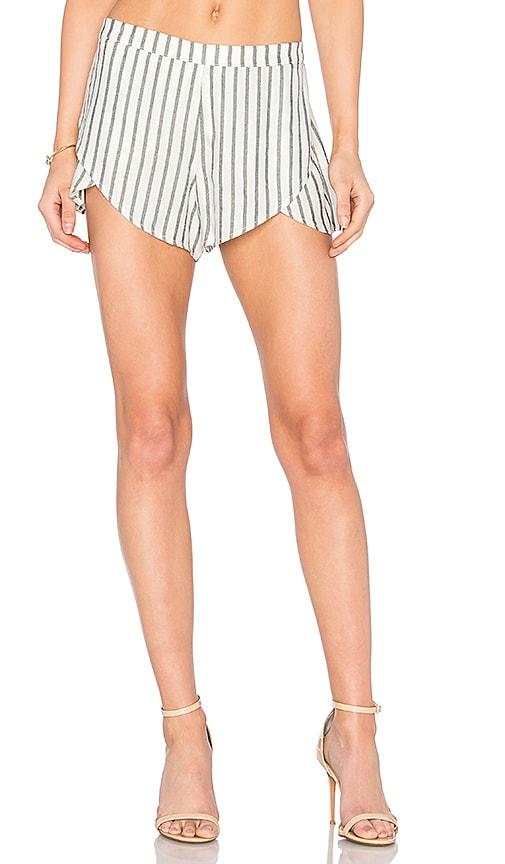 MERRITT CHARLES Taylor Shorts in Black & White Stripes