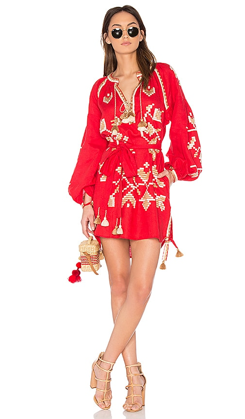 Long Sleeve Flora Embroidered Mini Dress