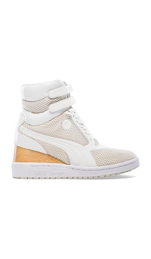 MY-77 D2 Sneakers