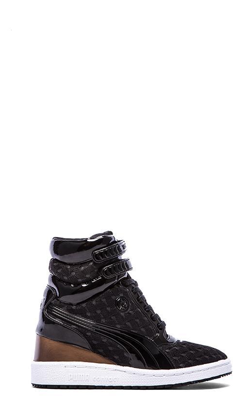 My-77 Sneaker