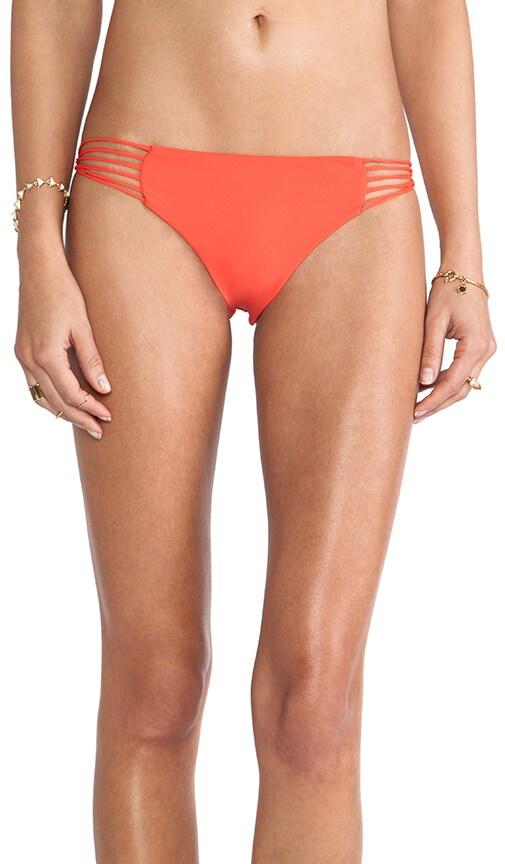 Swimwear Lanai Multi String Loop Side Bottom