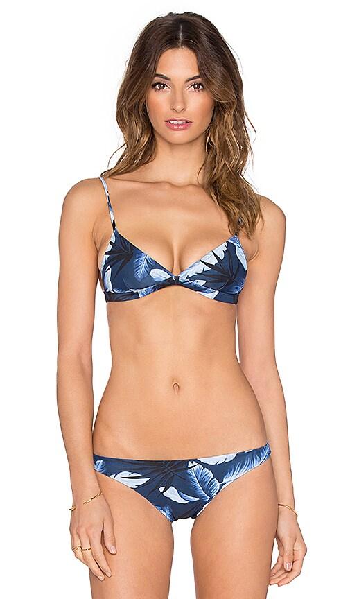 Belize Triangle Bikini Top
