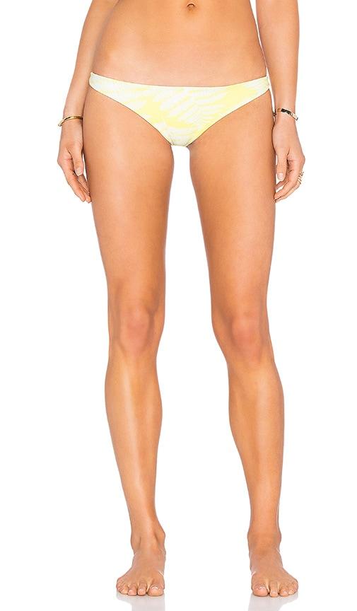 Miyako Bikini Bottom