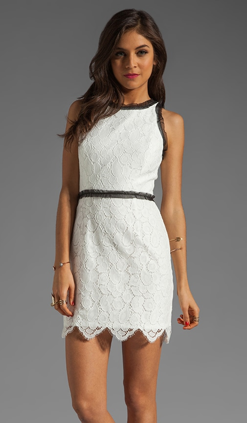 Begonia Scallop Lace Claudia Dress