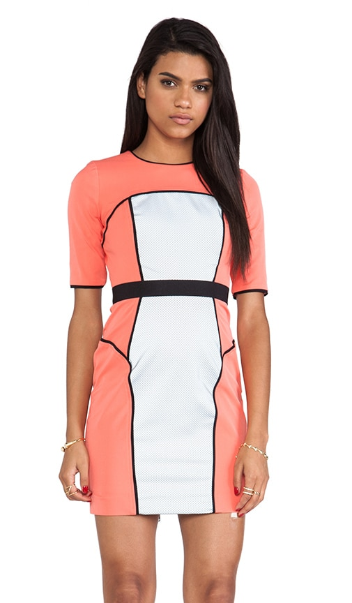 Italian Power Stretch Reflective Sleeve Dress