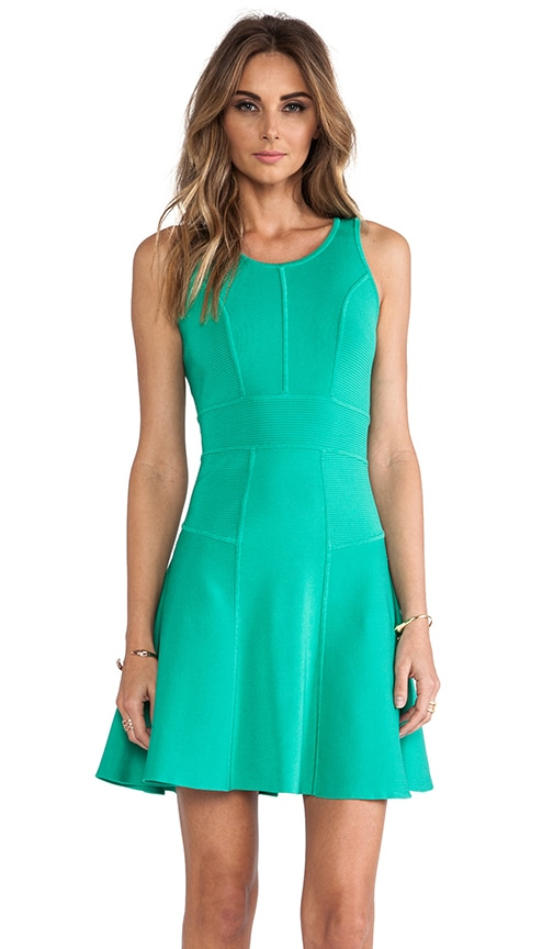 Fit and Flare Stretch Dress