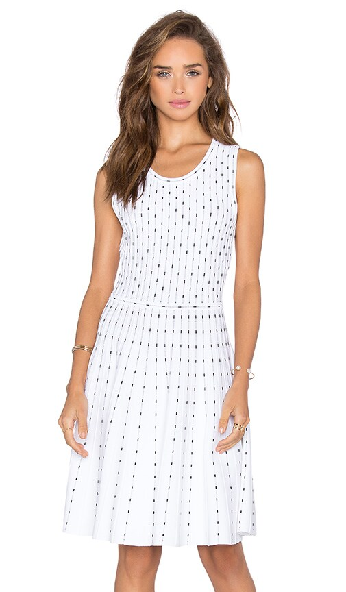Vertical Dot Flare Dress