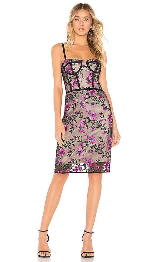 Bustier Knee Length Dress
