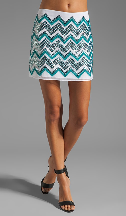Mirrored Paillette Embroidered Mini Skirt