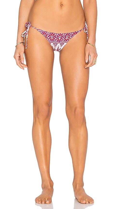 Mia Marcelle Side Tie Bikini Bottom in Burgundy