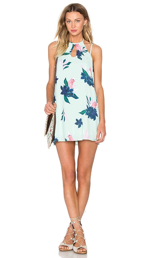 MINKPINK What A Galah Dress in Mint