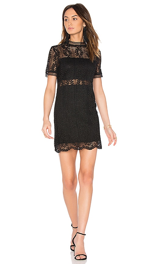 MINKPINK Tell Tale Lace Dress in Black