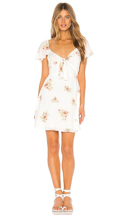 Sweet Delilah Mini Dress by Minkpink