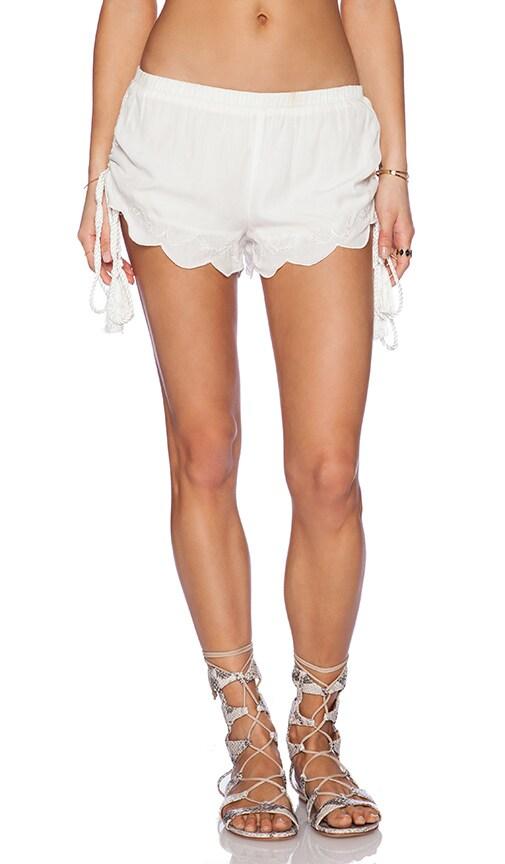 Castaway Shorts