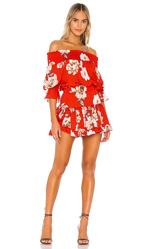 MISA Los Angeles X REVOLVE Darla Dress in Poppy Floral | REVOLVE