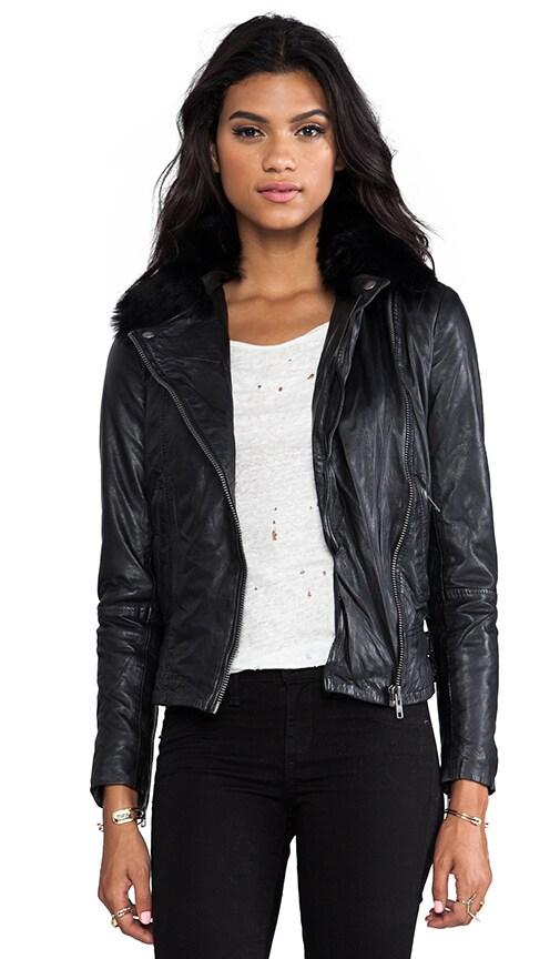 Lindus Detachable Collar Jacket