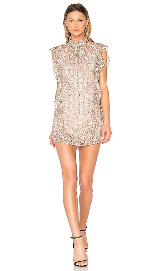 Marissa Webb Alaina Lace Dress in Pink