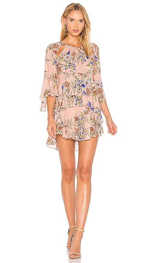 Marissa Webb Emmeline Print Dress in Rose