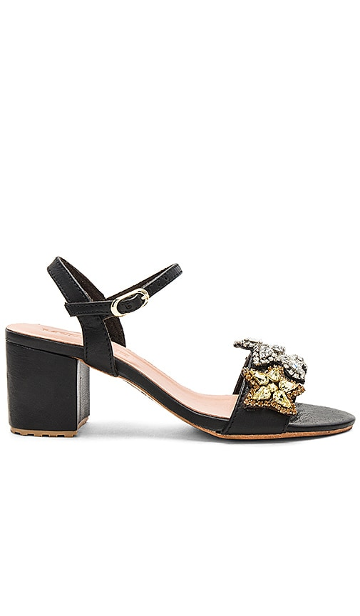 Mystique Star Sandal in Black