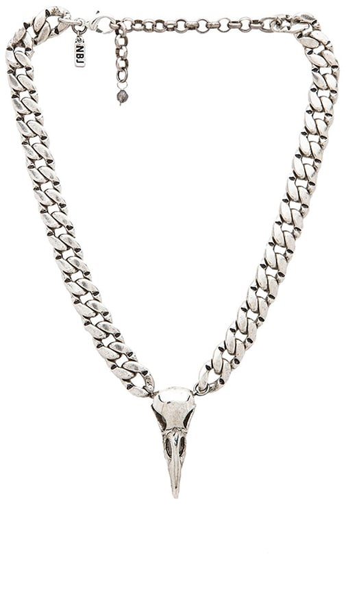 Natalie B Jewelry Iron Crow Choker Necklace in Silver