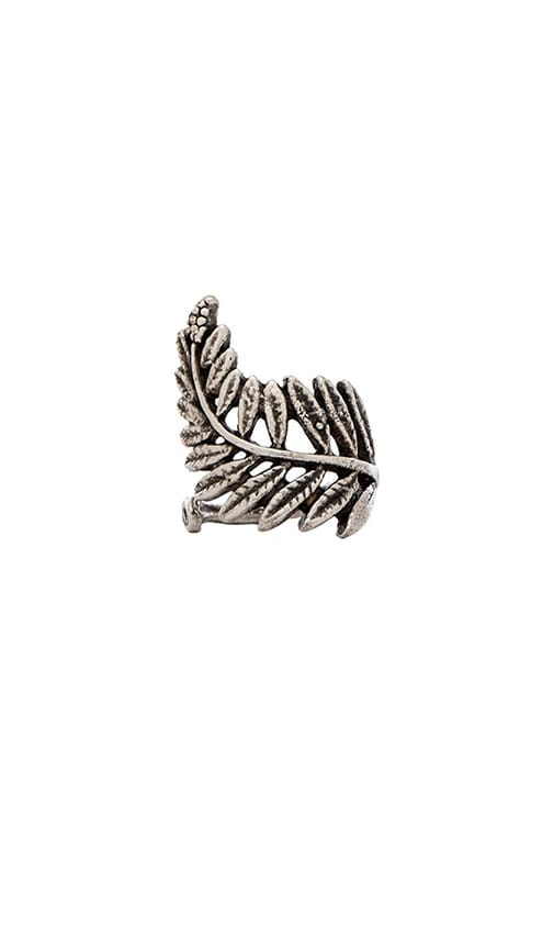 Natalie B Jewelry Floating Fern Ring in Metallic Silver