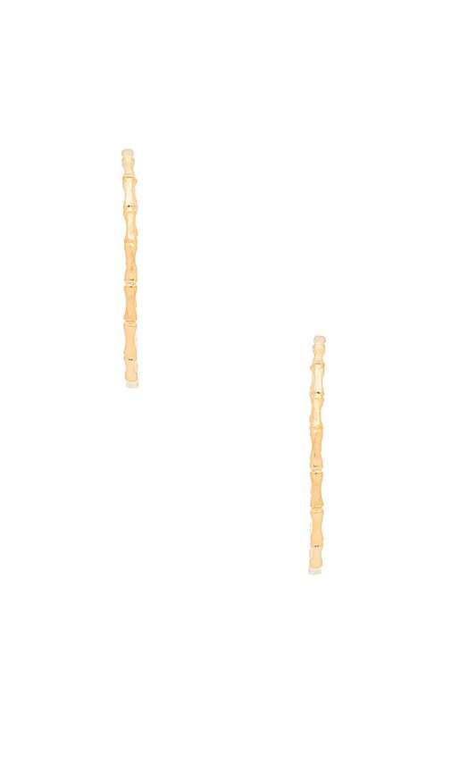 Natalie B Jewelry Bamboo Hoop Earrings in Metallic Gold