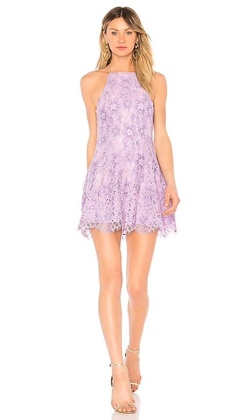 NBD Bria Dress in Lavender