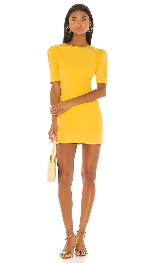 Dani Mini Dress