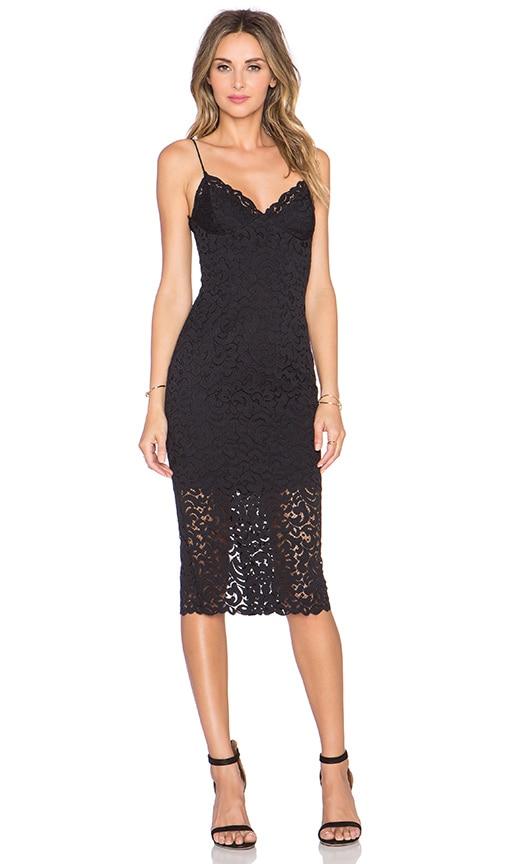 Paisley Lace Bra Dress. NICHOLAS