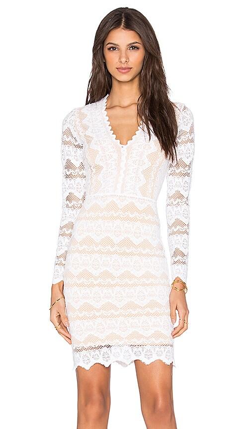 Nightcap Sierra Lace Deep V Dress in Dove & Nude