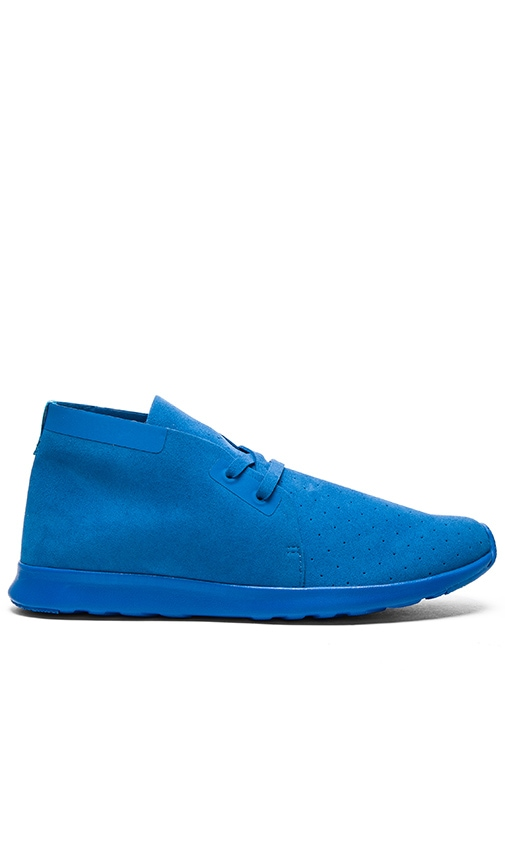 Native Apollo Chukka in Blue