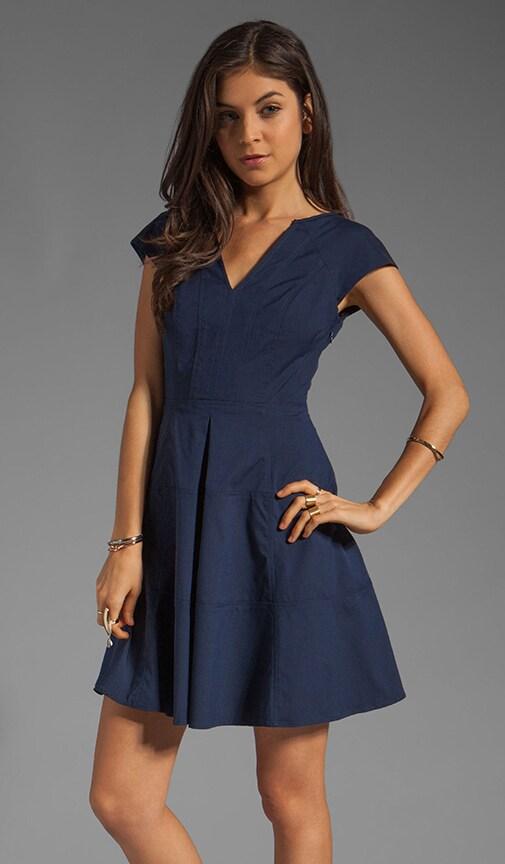 Zobra Dress