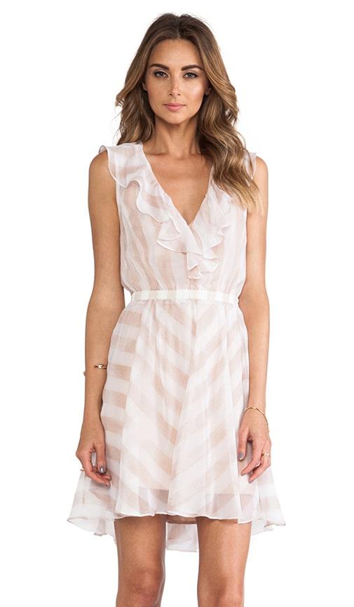Subtle Hint Dress