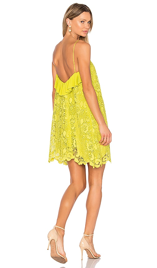 No. 21 Lace Dress in Lemon