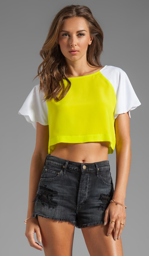 Neon Collection Scalloped Crop Top
