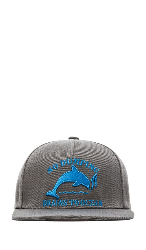 Jasper Dolphin No Dumping Snapback